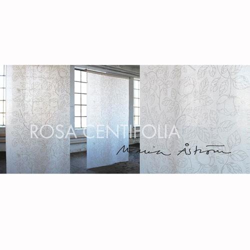 Rosa-Centifolia-Vit-1