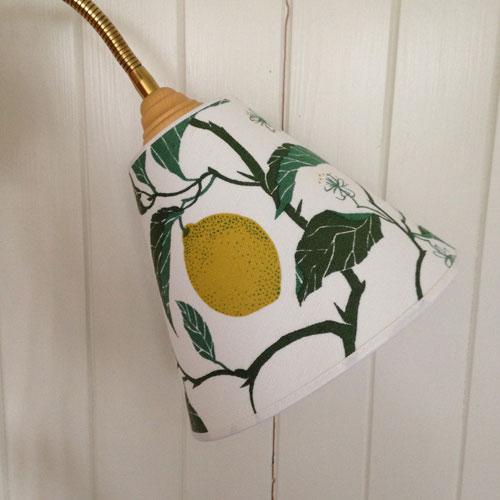 Skärm-Limon-Toppring-1