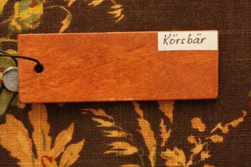 koersbaer-web-jpg4e6790513d33e